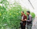 Nông nghiệp 4.0 đưa nông sản Việt ra thế giới
