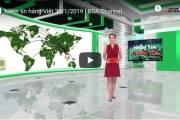 [Video] Niềm tin hàng Việt 28/1/2019