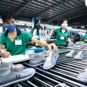 Doanh nghiệp Việt Nam cần gánh vác vai trò  của mình