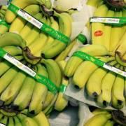 15 tấn chuối Việt Nam đầu tiên đã có mặt ở siêu thị Nhật Bản