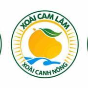 Cục Sở hữu trí tuệ cấp 'Nhãn hiệu chứng nhận xoài Cam Lâm'