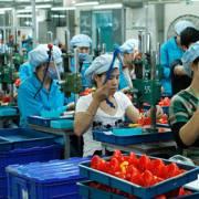 Chính phủ đồng ý với đề xuất giảm thuế cho doanh nghiệp