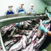 Xuất khẩu thực phẩm vào Hoa Kỳ sẽ khó hơn