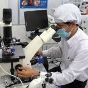 Việt Nam tăng 12 hạng về đổi mới sáng tạo toàn cầu