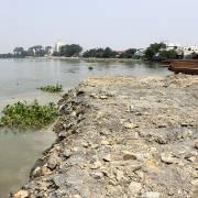 Yêu cầu kè bờ ở dự án lấn sông Đồng Nai