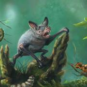 Phát hiện loài dơi đào hang tuyệt chủng ở New Zealand