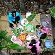 Tạo thành hệ sinh thái miệt vườn