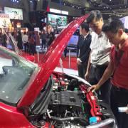 Kêu khó với Nghị định 116, doanh nghiệp vẫn nhập hàng ngàn ôtô về Việt Nam