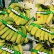 Những lưu ý cho DN Việt khi xuất khẩu chuối sang Trung Quốc