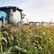 6 xu hướng chuyển đổi số trong nông nghiệp