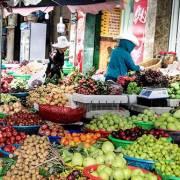Xuất khẩu trái cây: số liệu hoàng tráng, nhưng là xuất khẩu giùm cho Thái?