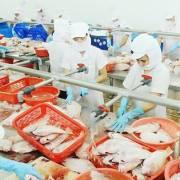 Tận dụng lợi thế từ cuộc chiến thương mại, Việt Nam dồn sức cho xuất khẩu