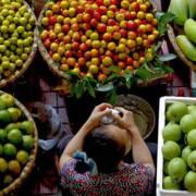 Hàng hóa, nông sản bây giờ phải có 'lai lịch rõ ràng'