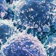 Dùng virus tiêu diệt ung thư và ngăn chặn bệnh quay lại