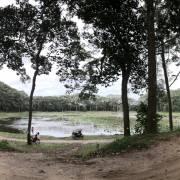 Sự kết nối từ ao làng