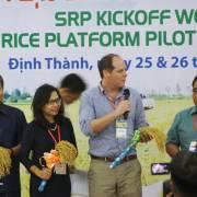 SRP tạo vùng lúa gạo bền vững cho ĐBSCL