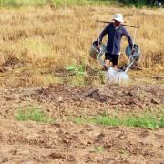 Hạn mặn miền Tây: 'Giá mua nước ngọt từ 60.000 đến 200.000 đồng/khối'