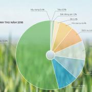 Hoàng Anh Gia Lai đặt mục tiêu thành tập đoàn hàng đầu về nông nghiệp