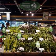 Thực phẩm hữu cơ, thực phẩm sạch lên ngôi