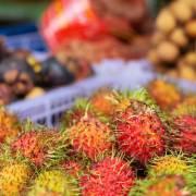 Trung Quốc lần đầu tiên nhập siêu trái cây