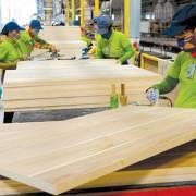 Mỹ vẫn là thị trường chủ đạo xuất khẩu gỗ và sản phẩm gỗ của Việt Nam