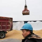 Bắc Kinh cảnh báo, nông dân Mỹ sẽ khốn đốn nếu để mất thị trường Trung Quốc