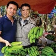 Hàng Việt muốn vào Nhật phải sạch thuốc
