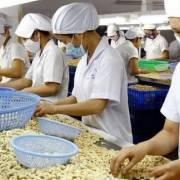 Doanh nghiệp Việt tìm cơ hội xuất khẩu sang thị trường Singapore