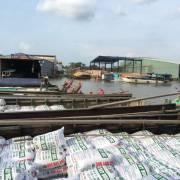 Trung Quốc giảm mạnh nhập khẩu gạo từ Việt Nam