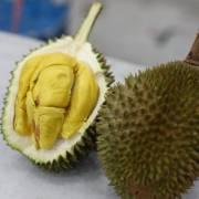 Xuất khẩu sầu riêng của Malaysia có thể nhảy vọt sau cái gật đầu của Trung Quốc