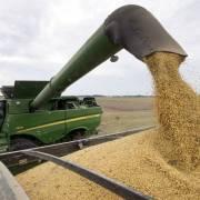 Trung Quốc ngừng mua nông sản Mỹ để đáp trả thuế quan