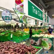Singapore muốn mua rau củ, nấm tươi của Việt Nam