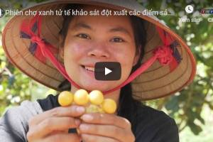 [Video] Phiên chợ xanh tử tế khảo sát đột xuất các điểm sản xuất nông sản