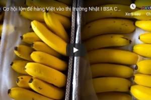 [Video] Cơ hội lớn để hàng Việt vào thị trường Nhật