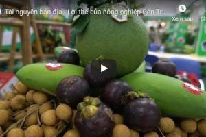 [Video] Tài nguyên bản địa – lợi thế của nông nghiệp Bến Tre