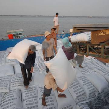 DN kiến nghị sửa đổi Nghị định 109 về xuất khẩu gạo