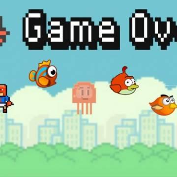 Chuyện buồn khởi nghiệp, từ Flappy Birds đến cái chuồng gà