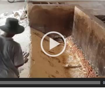 Video: Đau lòng nhìn cảnh trứng gà bị đập bỏ làm nguyên liệu chế biến thức ăn gia súc