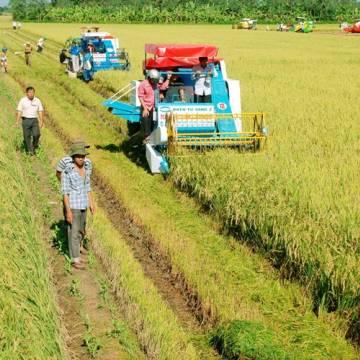 Đề xuất bỏ quy định thời hạn sử dụng đất nông nghiệp 50 năm