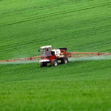 Dư lượng thuốc bảo vệ thực vật tối đa cho phép của thị trường Mỹ: Mặt hàng gạo