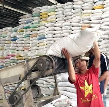 Chính thức 'cởi trói' cho xuất khẩu gạo