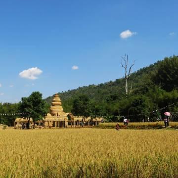 Người Thái bán gạo có chỉ số đường thấp, còn Việt Nam?