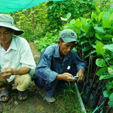 ĐBSCL trước thách thức nông nghiệp công nghệ cao
