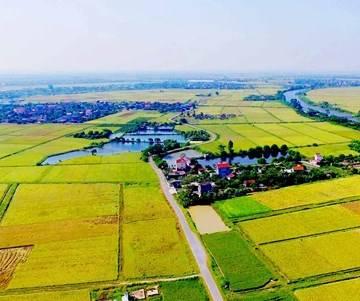 Xu thế phát triển thị trường quyền sử dụng đất nông nghiệp