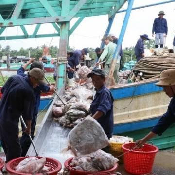 Doanh nghiệp thủy sản đồng loạt báo lãi lớn năm 2018