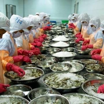Mỹ công bố thuế chống bán phá giá 0% cho 31 doanh nghiệp Việt