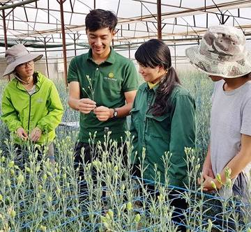 Theo anh Takahiro Nunome lên Lâm Đồng học làm nông kiểu Nhật