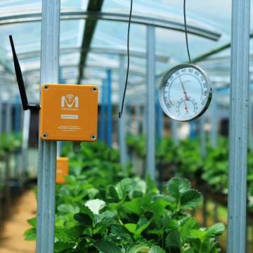 Điều kiện để nông nghiệp bền vững và hội nhập
