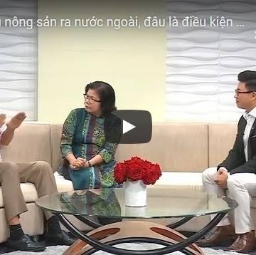 [Video] Vua chuối FOHLA chia sẻ kinh nghiệm thâm nhập thị trường Nhật Bản