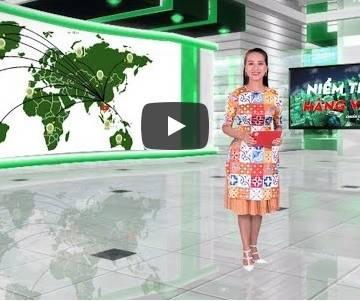 [Video]: Niềm tin hàng Việt 19/11/2018